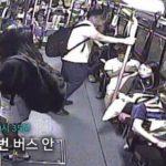 '한국의 흔한 시민의식'…버스 블랙박스 영상 화제