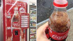 '일본의 특별한 콜라 자판기 화제'