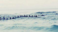 바다에 빠진 일가족 구하려 '인간띠' 만든 해수욕객들