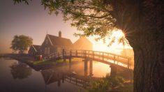 동화처럼 아름다운 풍경, 안개 속 네덜란드 풍차
