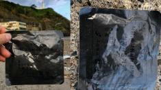 태풍 휩쓸고 지나간 일본 바닷가에서 발견된 국군 전투식량(영상)