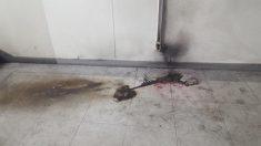 고려대서 충전 중이던 전동킥보드에 불..200여명 대피