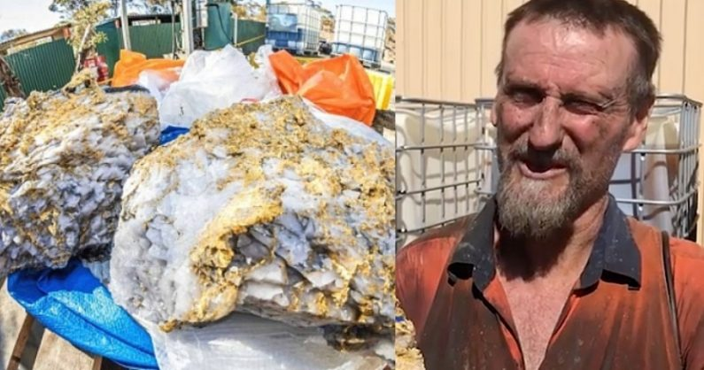 운이 억수로 좋은 광부..123억 원어치 금 박힌 암석 발견