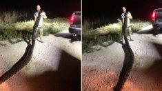 5m 비단뱀 맨손으로 잡은 '전설의 땅꾼'
