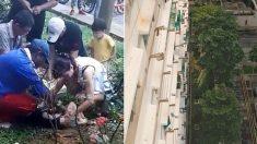 아파트 11층서 추락한 2살 싱가포르 아이 기적적 생존