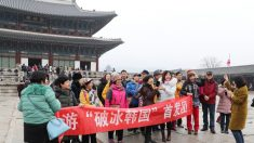 中여행사, 韓단체관광 상품 내놨다가 취소 소동