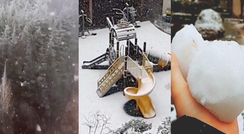 부산에 눈이라니…'보기 드문 진풍경'에 시민들 어리둥절