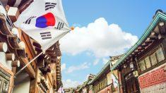 세계인 '80%' 한국 긍정적으로 인식,  한국어학·한국학 전공 덩달아 '인기폭발'