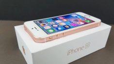 애플 '아이폰SE2' 기능과 성능은 업그레이드, 가격은 44만 원대… 올봄 출시될 듯