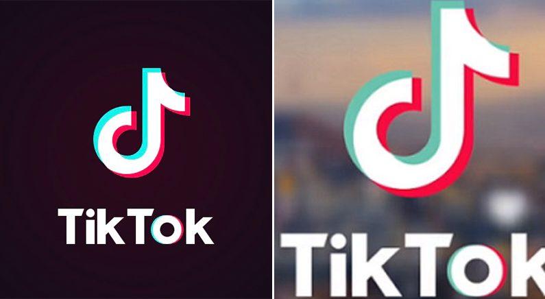 영상공유 앱 '틱톡'이 사용자 스마트폰에서 중국 서버로 전송하는 정보 목록