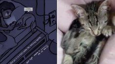 에픽하이 신곡 '룰라비 포 어 캣(LULLABY FOR A CAT)' 듣고 꿀잠에 빠지는 고양이들