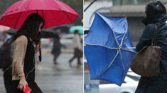 오늘(26일) 전국에 비 내리면서 기온 떨어진다..체감온도 '쌀쌀'