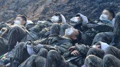 '산불 진압' 끝내고 길바닥에 털썩 쓰러져 휴식 취하는 국군 장병들