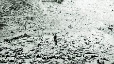 마오쩌둥 중국공산당 주석이 6·25전쟁에서 '인해전술' 펼친 진짜 이유