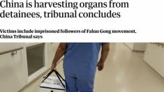 """""""사람의 장기를 얻기 위한 살인이 중국에서 계속 되고 있다"""" 英 가디언"""