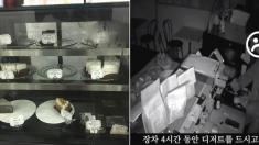 빵집 털러 들어와서 4시간 동안 '먹방'만 찍은 도둑 (영상)