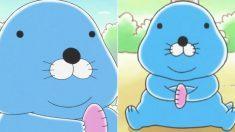 아기 해달 보노보노가 '비만풀' 먹고 뚱노뚱노가 됐다