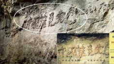 """""""미래를 예견하는 바위?"""" 단면에서 글자가 드러난 중국의 암석"""