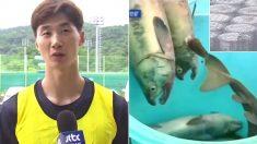 도쿄올림픽 식단에 후쿠시마산 식재료 쓴다는 소식에 우리나라 국가대표들의 반응