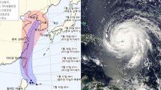 '강풍+폭우' 동반한 제5호 태풍 '다나스', 이번 주말에 한반도 온다