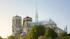 '유리상자' 애플스토어 만든 건축회사에서 제안한 '노트르담 성당' 복원안