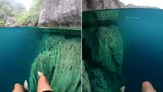 맑은 물에서 물놀이하면 이런 기분이다 (영상)