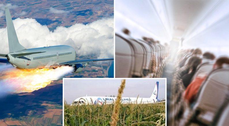 새 떼와 충돌한 러시아 여객기, 엔진화재로 옥수수밭에 비상 착륙