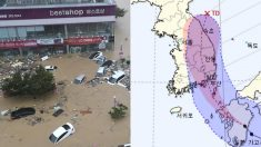 오늘(6일) 밤, 한반도에 '최고 200mm 폭우' 태풍 프란시스코 상륙한다