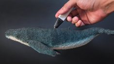 '3D 펜'으로 고래를 만들었다 (영상)