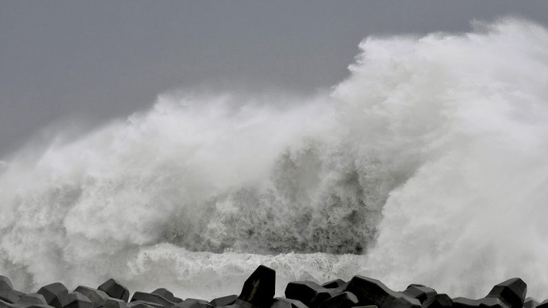 후쿠시마원전 방사성 오염 폐기물 하기비스 홍수에 유실