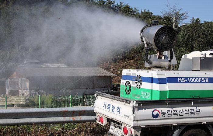 경기도 포천에서 신고된 아프리카돼지열병 의심사례 '음성' 판명