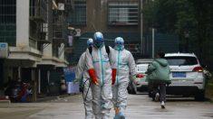신종 코로나바이러스, 중국의 거의 모든 것에 영향…글로벌 공급망에도 지장