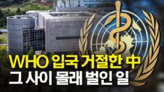 세계보건기구 조사단 입국 거절했던 중국이 몰래 벌인 일