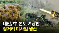 대만, 中 본토 겨냥한 장거리 미사일 대량 생산 돌입