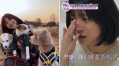 배우 이초희가 유기동물 입양 앱을 본 뒤 '임시보호'를 시작한 이유