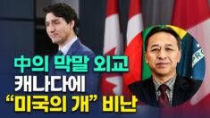 """中 외교관, 캐나다 총리에 """"미국의 사냥개"""" 막말"""