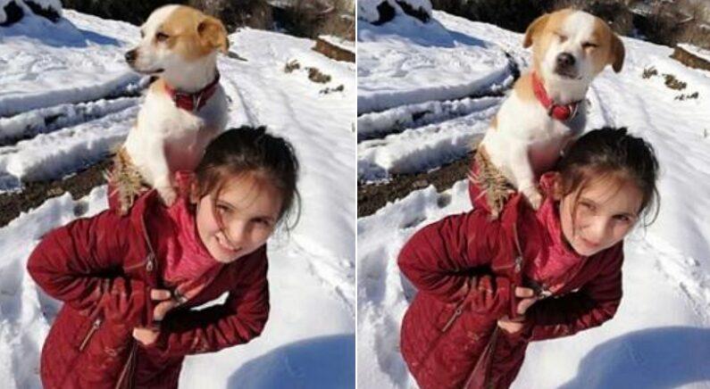 시골 마을에 왕진 갔던 수의사를 뭉클하게 만든 8살 소녀의 '착한 마음'