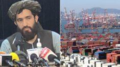 """""""한국과 경제 협력하고 싶다""""는 탈레반 '공식 입장'이 전해졌다"""